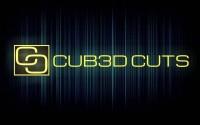 CUB3D CUTS